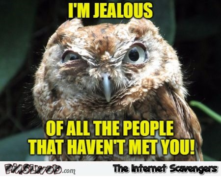 I'm jealous of all the people that haven't met you sarcastic meme @PMSLweb.com