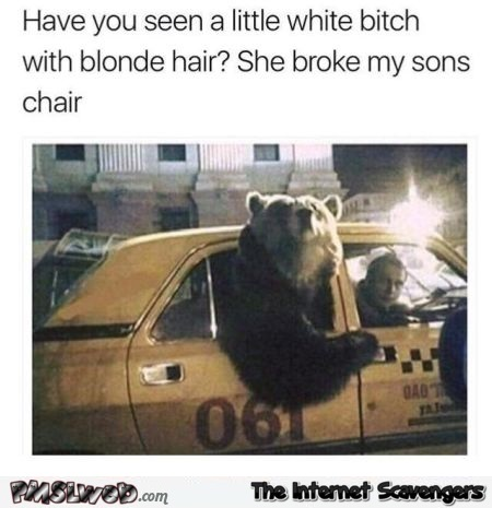 The bear is after Golidlocks funny meme