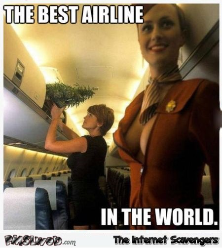 The best airline in the world funny adult meme - Jocular memes and pictures