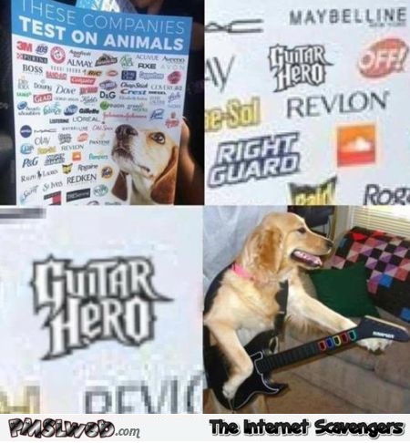 Guitar hero is tested on animals funny meme @PMSLweb.com