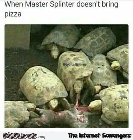 When Master Splinter doesn't bring pizza funny meme @PMSLweb.com