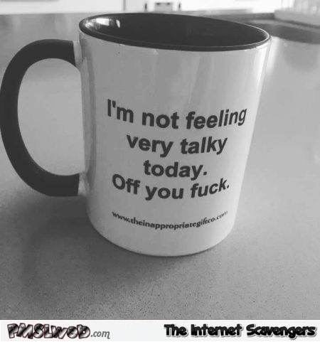 I'm not feeling very talky today funny sarcastic mug - Pics and giggles @PMSLweb.com
