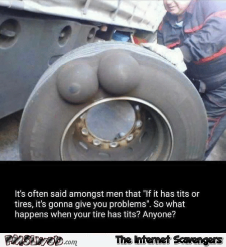 If it has tits or tires it's gonna give you problems funny meme @PMSLweb.com
