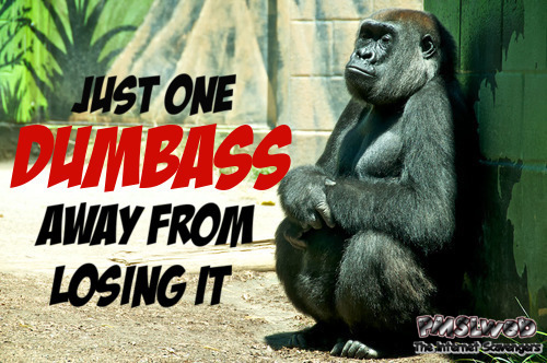 One dumbass away from losing it funny sarcastic meme @PMSLweb.com