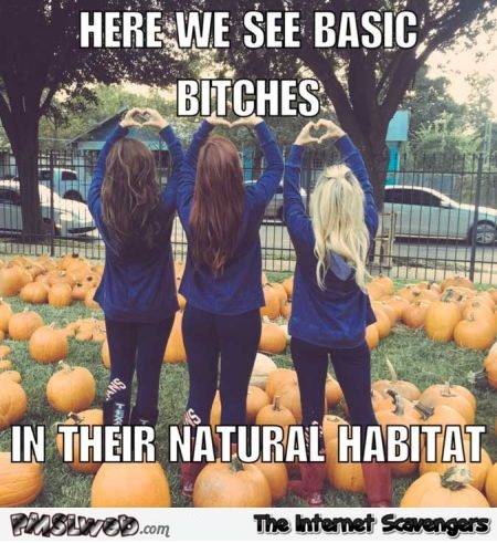 Basic bitches in their natural habitat funny fall meme @PMSLweb.com