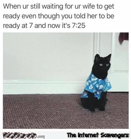 When you're waiting for your wife to get ready funny cat meme - Haha pictures @PMSLweb.com