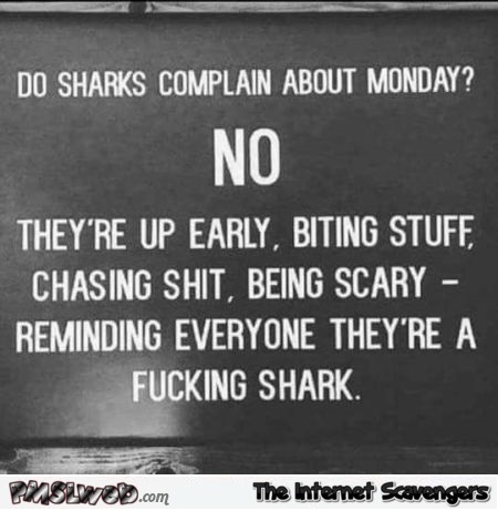 Do sharks complain about Monday funny sign - Laugh a minute pics and memes @PMSLweb.com