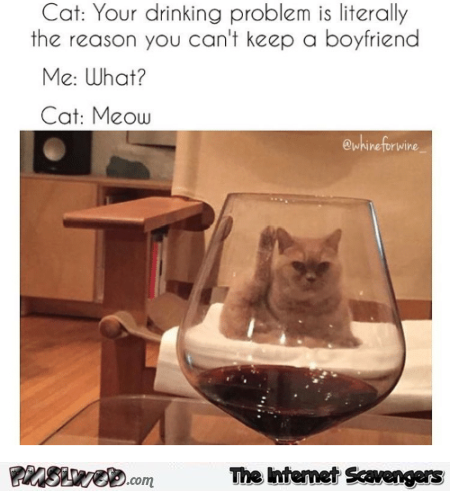 Your drinking is the reason you can't keep a boyfriend funny cat meme @PMSLweb.com