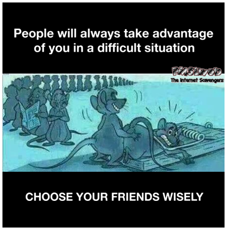 Choose your friends wisely sarcastic meme - Funny sarcastic memes @PMSLweb.com