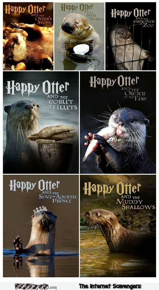 Funny Harry Potter Otter book covers @PMSLweb.com