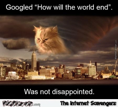 Googled how will the world end cat meme @PMSLweb.com