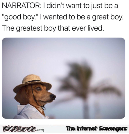 I didn't just want to be a good boy I wanted to be a great boy funny meme - Funny random Internet pictures @PMSLweb.com