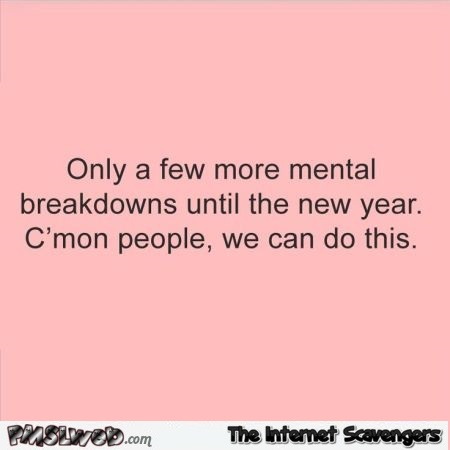 Only a few more mental breakdowns before the new year funny quote @PMSLweb.com