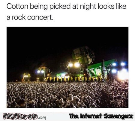 Cotton being picked at night looks like a rock concert funny meme @PMSLweb.com