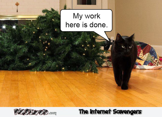 My work here is done funny Christmas tree cat meme @PMSLweb.com