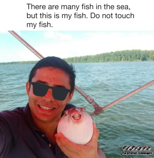 This is my fish do not touch my fish funny meme @PMSLweb.com