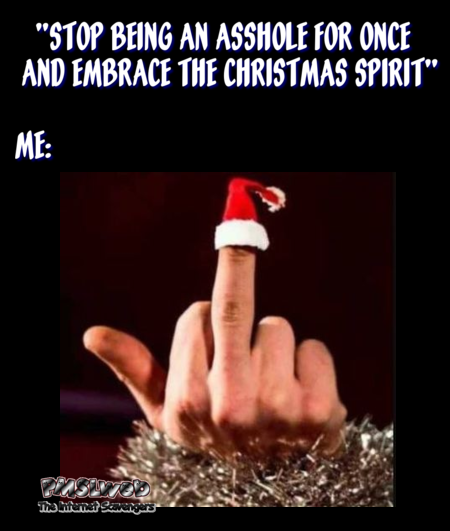 Stop being an asshole and embrace the Christmas spirit sarcastic meme @PMSLweb.com