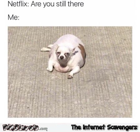 When Netflix asks you if you are still there funny meme @PMSLweb.com