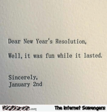 Dear New Year\'s resolution humor | PMSLweb