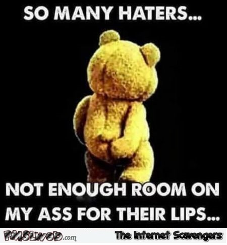 So many haters sarcastic meme @PMSLweb.com