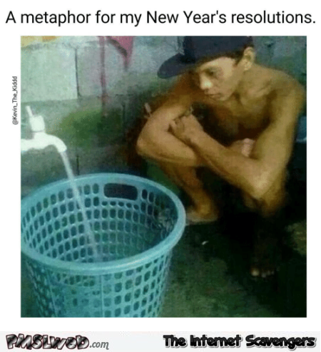 A metaphor for my new year's resolutions funny meme @PMSLweb.com