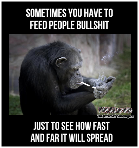 Sometimes you have to feed people bullshit sarcastic meme