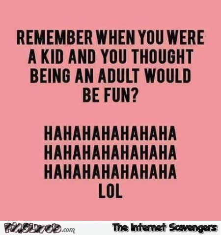 Remember when you thought being an adult would be fun funny quote @PMSLweb.com