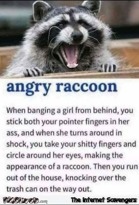 Angry raccoon sex position adult humor @PMSLweb.com