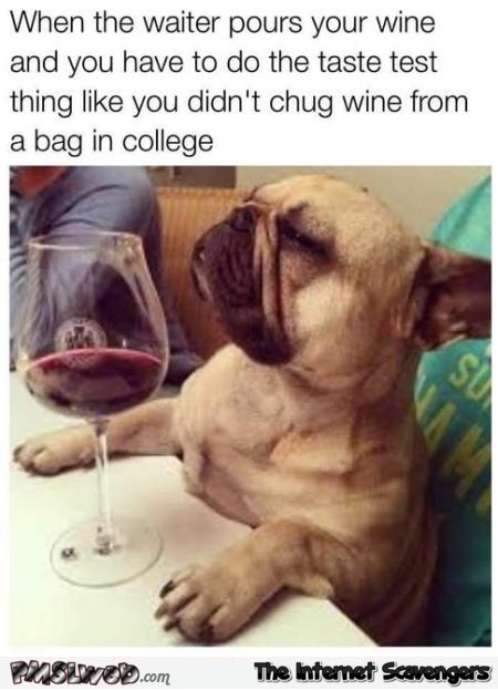 When the waiter pours your wine funny dog meme @PMSLweb.com