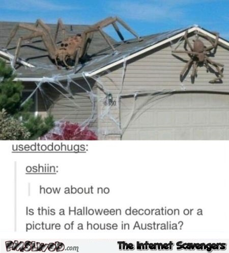 Is this a Halloween decoration or the picture of a house in Australia funny comment @PMSLweb.com