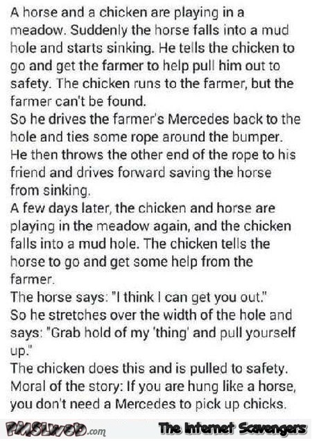 Funny naughty horse and chicken joke @PMSLweb.com