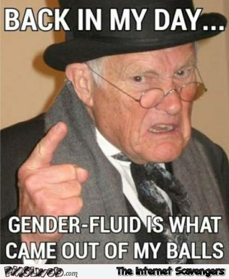 Gender fluid is what came out of my balls funny adult meme @PMSLweb.com