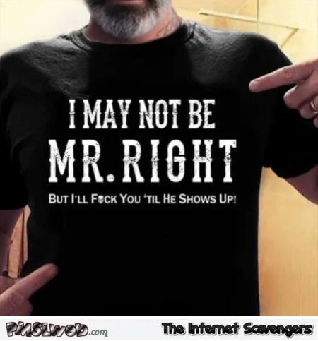 I may not be Mr Right funny adult T-shirt