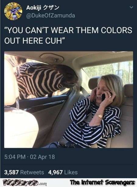 Zebra does not allow you to wear these colors funny tweet @PMSLweb.com