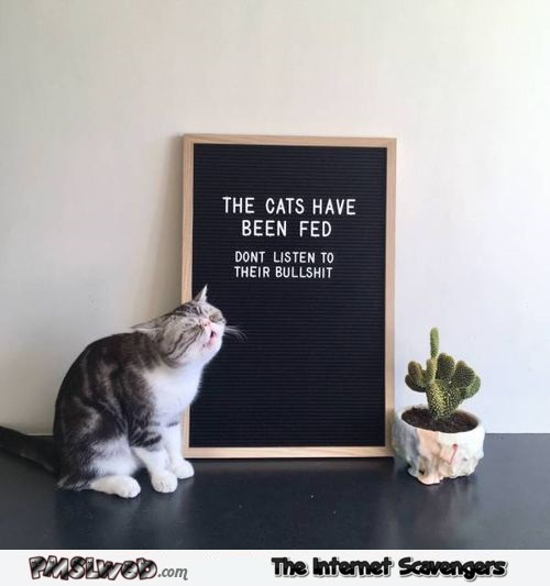 The cats have been fed funny sign - Daily memes and funny pics @PMSLweb.com