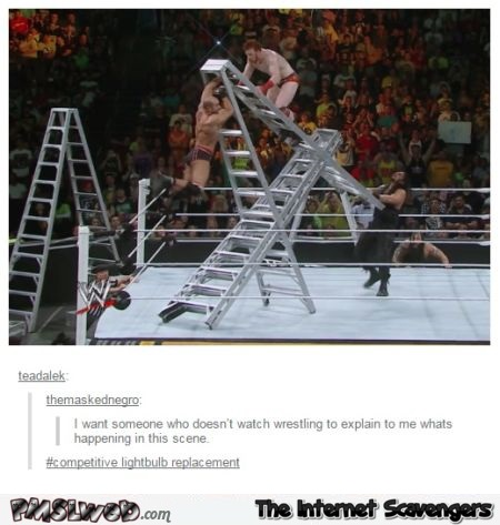 Please explain this wrestling scene to me funny post