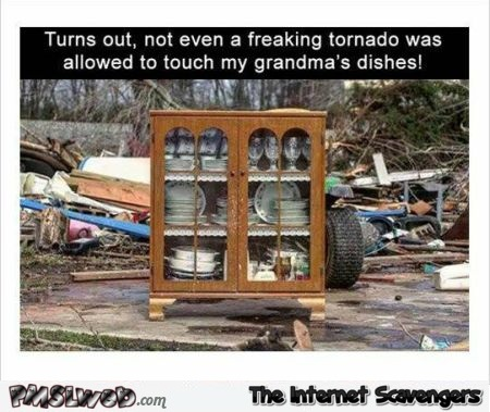 Not even a freaking tornado was allowed to touch grandma's dishes funny meme @PMSLweb.com