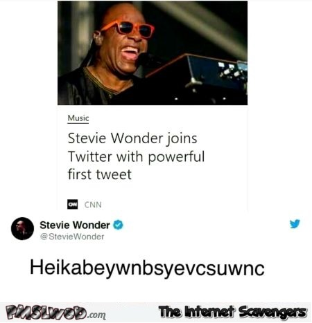 Stevie Wonder joins Twitter funny tweet @PMSLweb.com