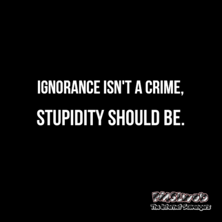 Ignorance isn't a crime sarcastic humor