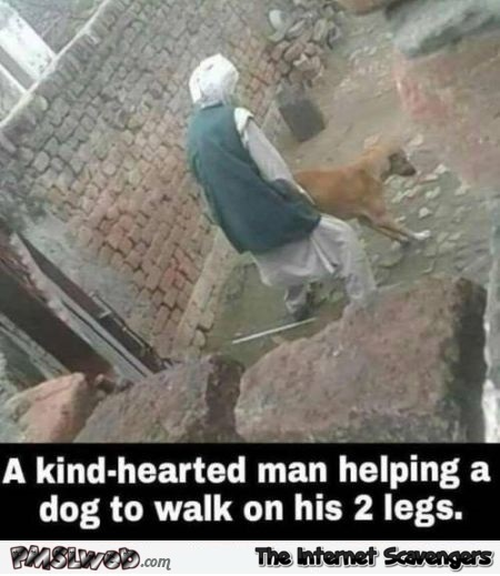 A kind hearted man helping a dog walk on his 2 legs offensive meme @PMSLweb.com