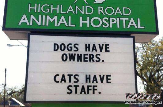 Dogs have owners cats have staff funny sign - Funny Friday YLYL @PMSLweb.com