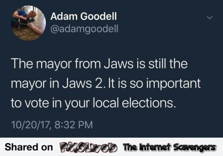 It is important to vote in your local elections funny tweet