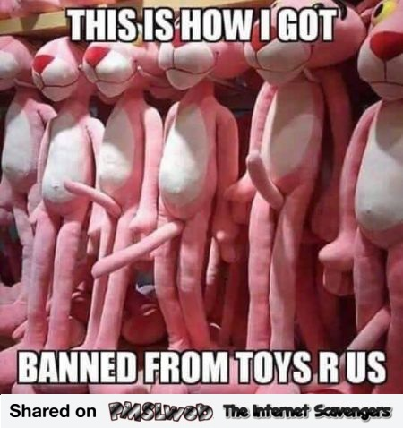 How I got banned from Toys R Us funny meme - Funny memes and pictures @PMSLweb.com