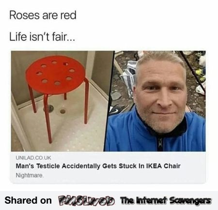 Roses are red funny Ikea meme @PMSLweb.com