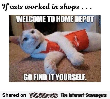 If cats worked in shops funny meme