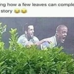 How a few leaves can completely change a story funny meme @PMSLweb.com
