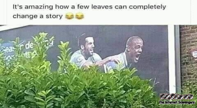 How a few leaves can completely change a story funny meme