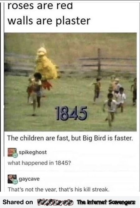 Big bird's kill streak funny comment