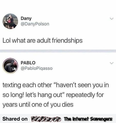 What are adult friendships funny post